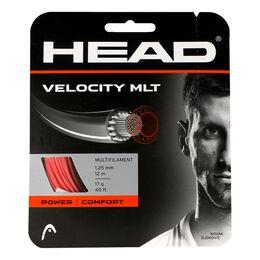 Velocity MLT 12m gelb